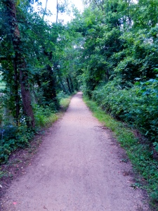 Trails in Princeton (Where I often am).