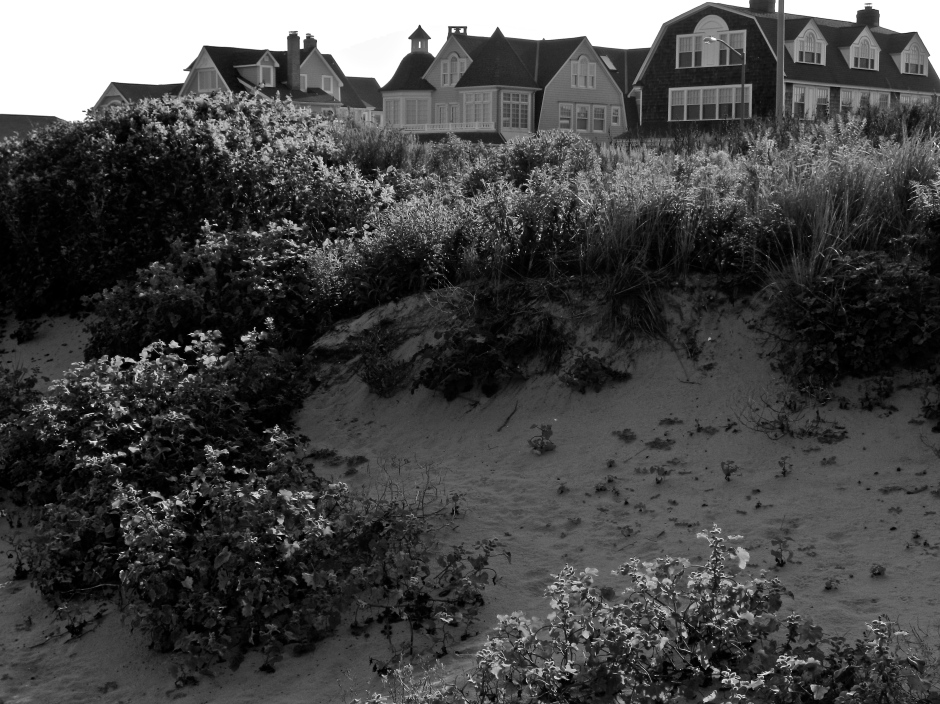 Beautiful water front homes peering over the sand dunes.