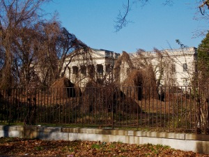 overgrowth where beautiful gardens once stood.